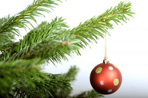 Nordmann Fir Christmas Tree with Bauble